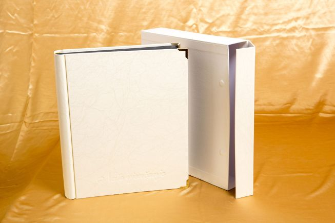 Adhesive and Slip-In photo albums